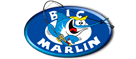 Big Marlin Surgelati – La rete in franchising del surgelato.
